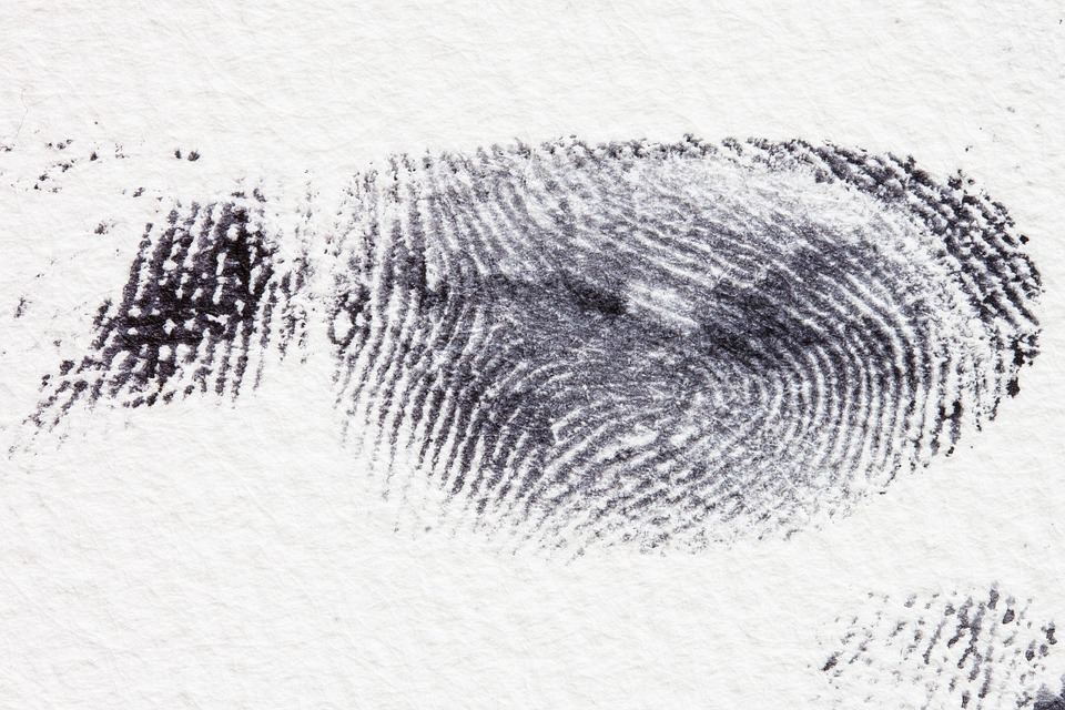 huella dactilar detective privado donosti