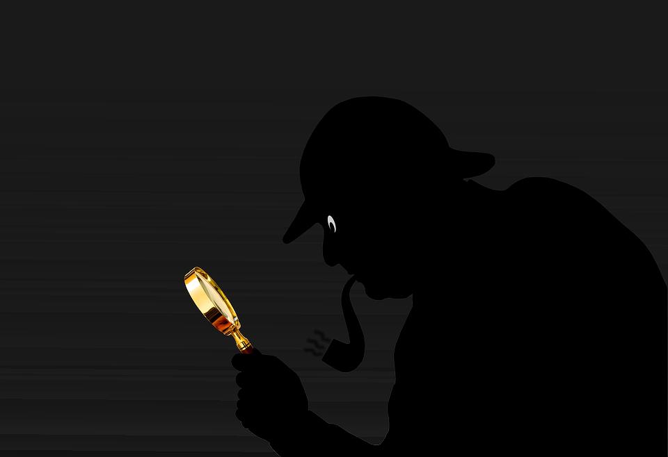 detective lupa